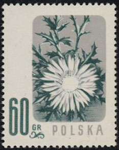 Scott: Poland 782 Color Error VF MNHWalocha Certificate - Polish Stamp